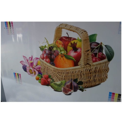 Sample of Flexographic Printing Machine